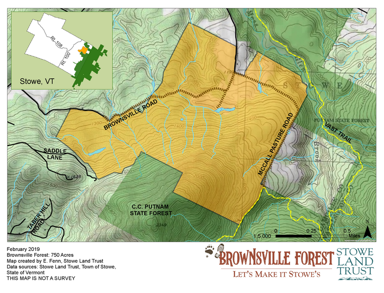 Stowe Land Trust Set to Purchase 750-acre Brownsville Forest